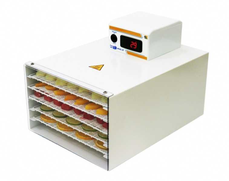 Desidratador de alimentos residencial Pratic Dryer 220 Volts Digital com timer M042-DT