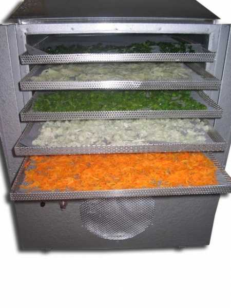 Desidratadores de Alimentos Modelo PD-15